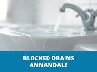 blocked drains annandale