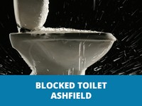 blocked toilet ashfield