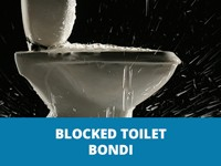 blocked toilet bondi thumb