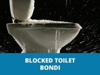 blockedtoiletbondithumb