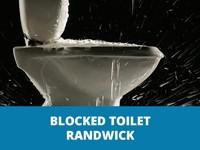 blockedtoiletrandwickthumb