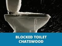 blockedtoiletschatswoodthumb