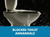 blocked toilet annandale