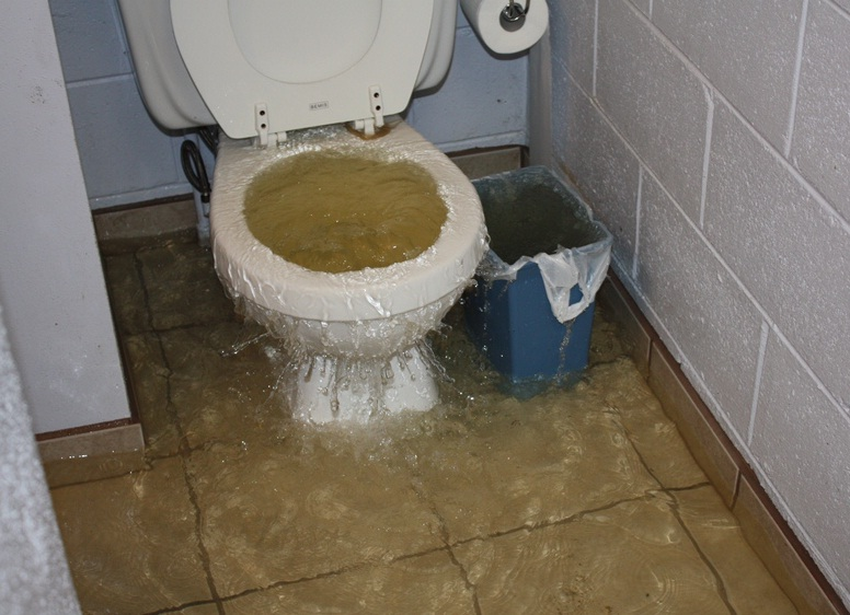 Operating problems with flush toilets – experiences from the United ...